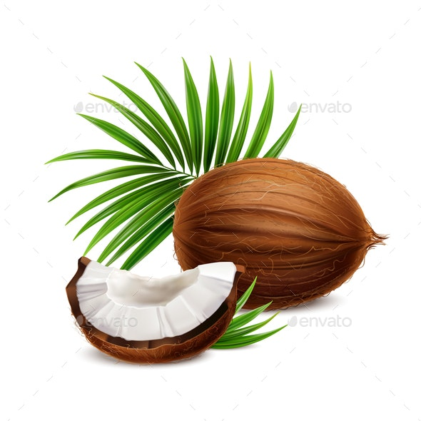 Coconut Realistic Image - Food Objects