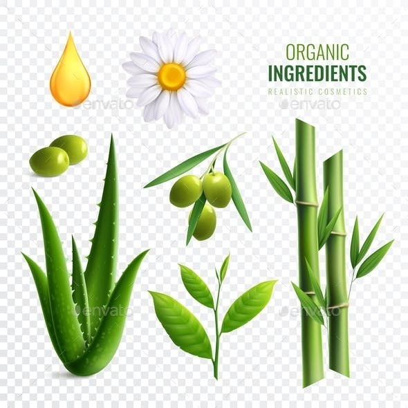 Realistic Transparent Organic Cosmetics Ingredients Icon Set