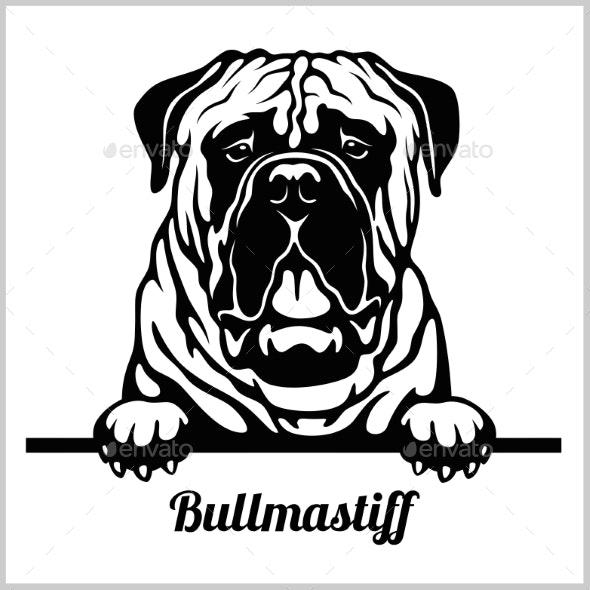 Bullmastiff Peeking Dog - Animals Characters