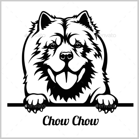 Chow Chow Peeking Dog