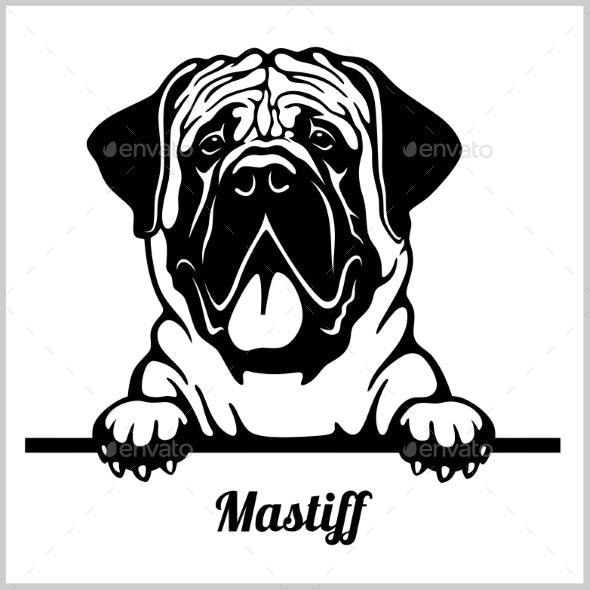 Mastiff Peeking Dog - Animals Characters