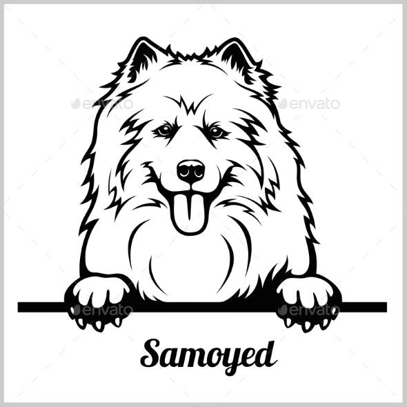 Samoyed Peeking Dog - Animals Characters