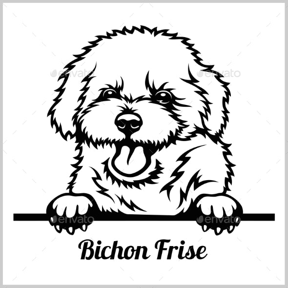 Bichon Frise Peeking Dog - Animals Characters