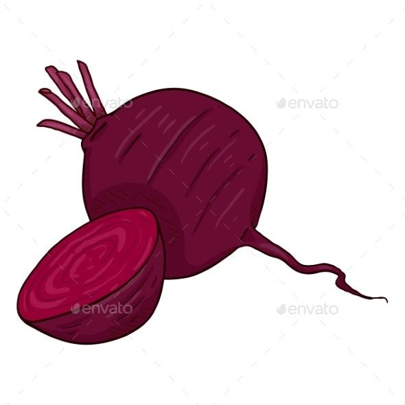 Vector Cartoon Red Beetroot Illustration - Miscellaneous Vectors