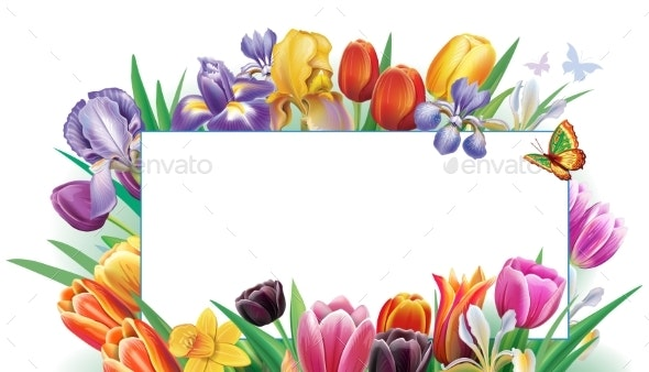 Card From Arrangement with Multicolor Spring - Flowers & Plants Nature
