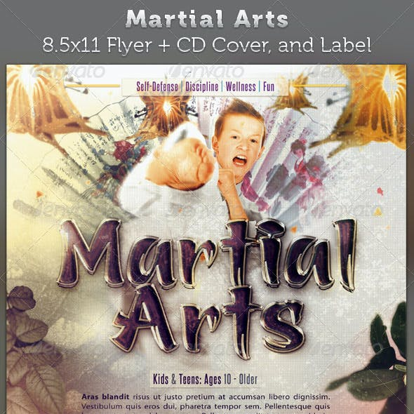 Martial Arts Full Page Flyer & DVD Template