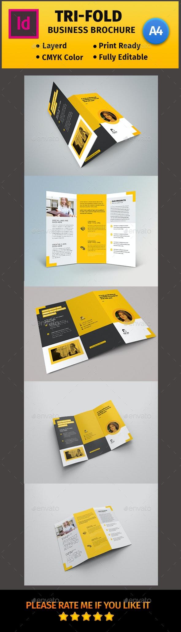 Tri-Fold Template  #03 - Informational Brochures