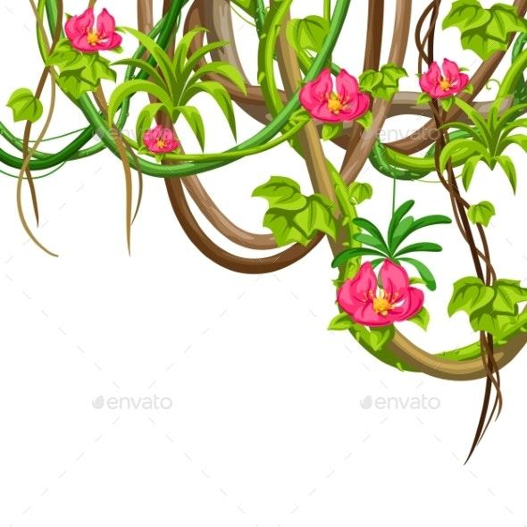 Jungle Vines - Flowers & Plants Nature