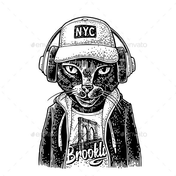 Cat in Headphones Dressed in the Hoodie