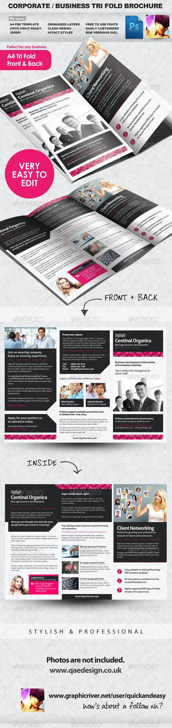 Corporate / Business Tri Fold Brochure - Corporate Brochures