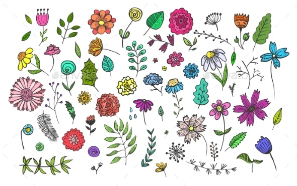 Set of Hand Drawn Colorful Flowers and Herbs - Flowers & Plants Nature