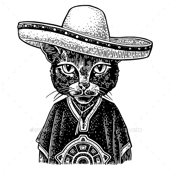 Cat Dressed in the Poncho and Sombrero - Animals Characters