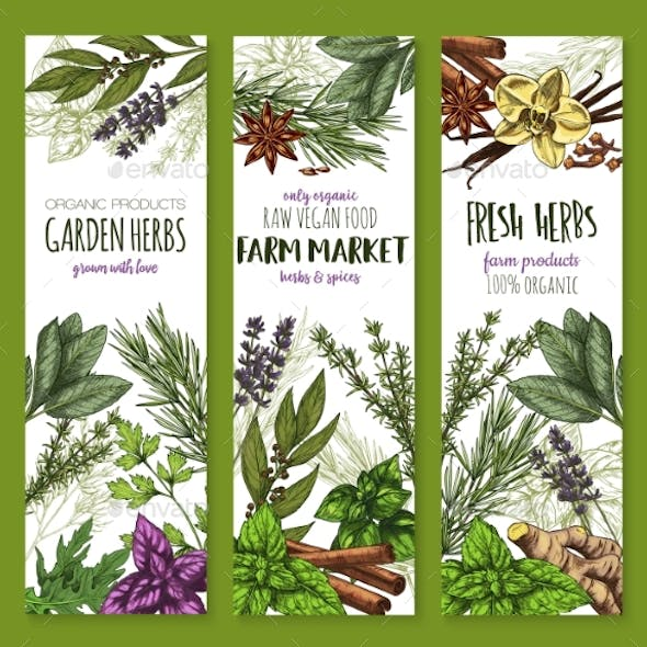 Herb and Spice Banners