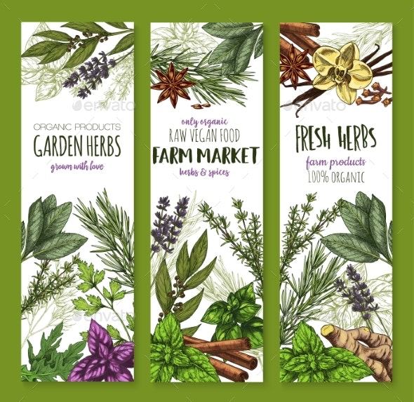 Herb and Spice Banners - Flowers & Plants Nature