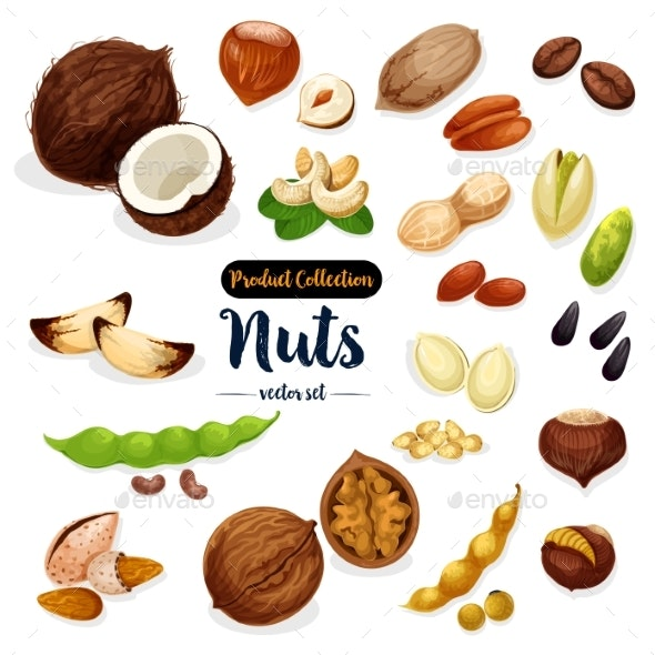 Nuts Seed and Bean Cartoon Icon Set - Food Objects