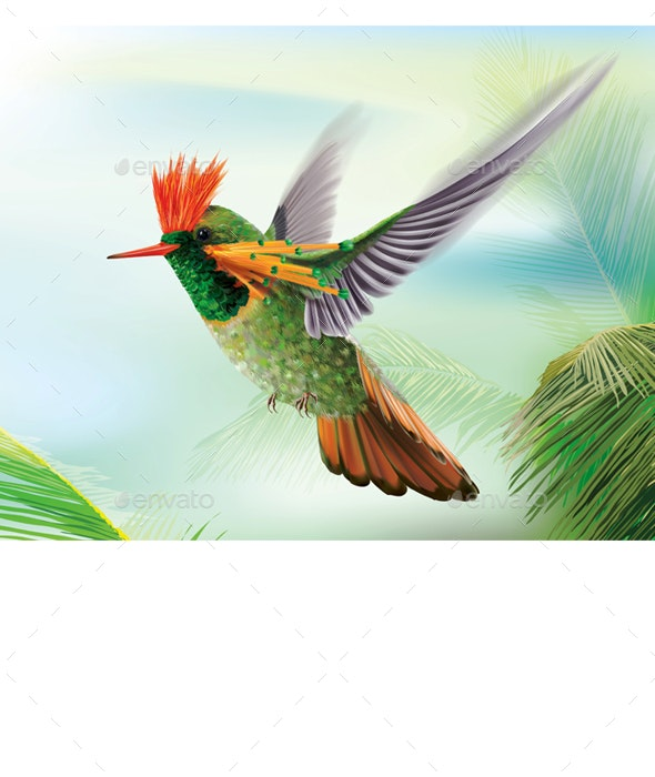 Hummingbird Tufted Coquette Lophornis Ornatus Over Palm Leaves - Animals Characters