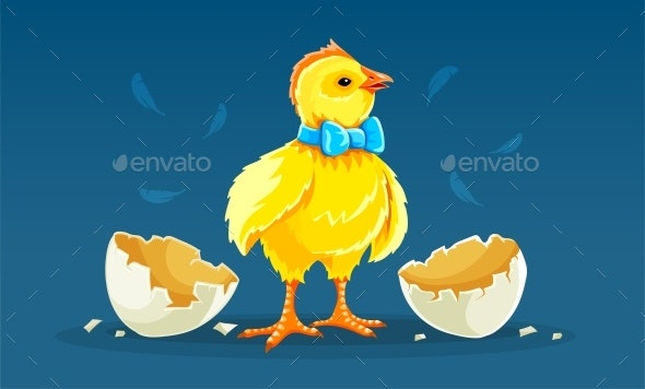 Cartoon Hen Chicken Rooster Hatched from Egg - Animals Characters