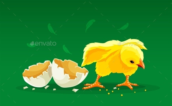 Newborn Cartoon Hen Chicken Rooster Hatched from Egg - Animals Characters