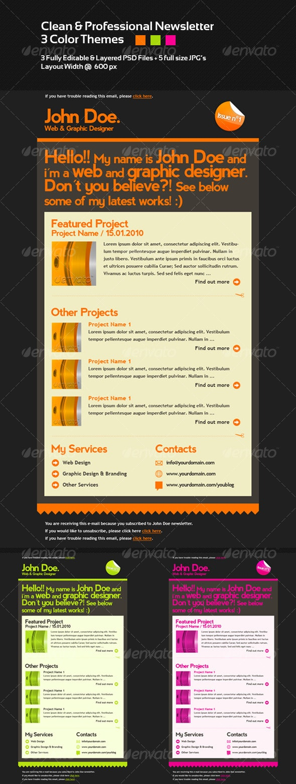 Clean & Professional Newsletter Layout - 3 Colors - Web Elements