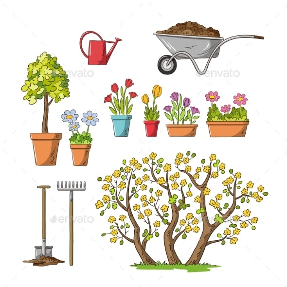 Flowers and Garden Tools - Flowers & Plants Nature