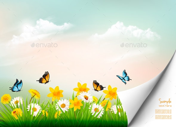 Spring Nature Background With Grass And Flowers - Seasons Nature