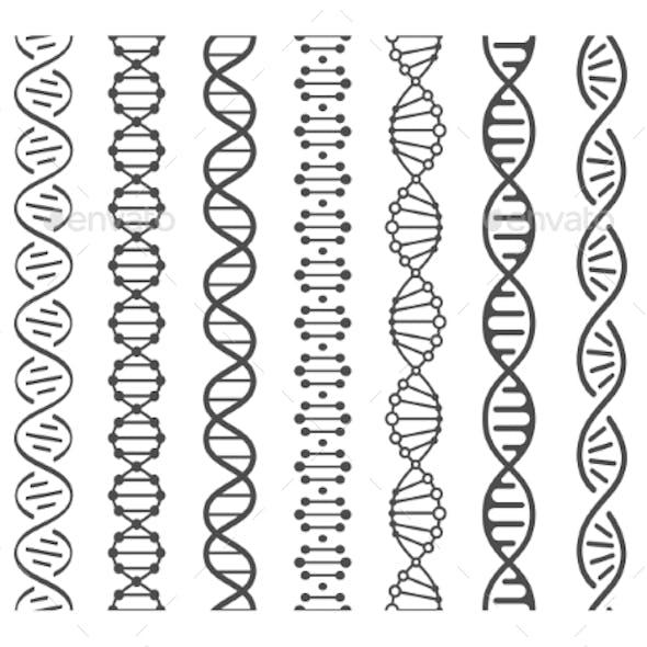 Seamless DNA Spiral