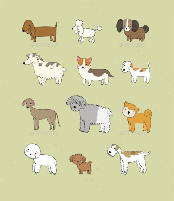 Dogs Collection - Animals Characters