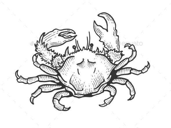 Crab Sea Animal Sketch Engraving Vector - Miscellaneous Vectors