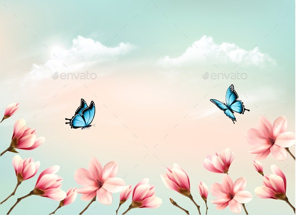 Nature Spring Background with a Pink Magnolia Branches on Blue Sky - Flowers & Plants Nature