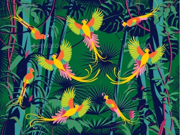 Birds of Paradise Fly in the Flowering Rainforest - Flowers & Plants Nature
