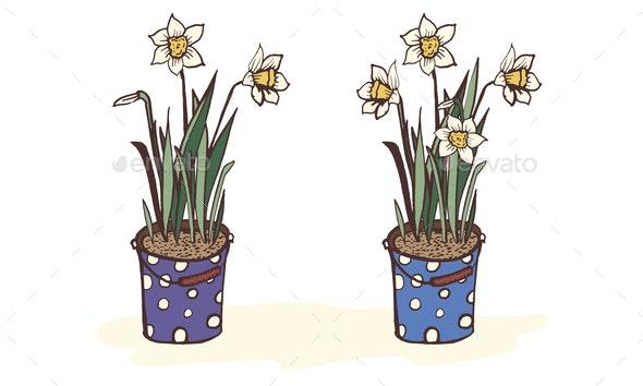 Daffodils Narcissus Set - Flowers & Plants Nature
