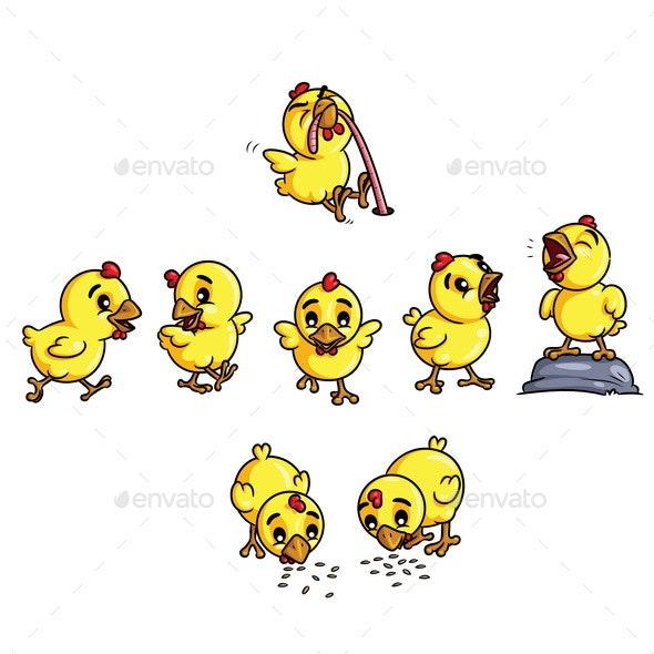 Chicks Cartoon - Animals Characters