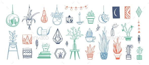 Home Decor and House Plants Vector Hand Drawn Set - Flowers & Plants Nature