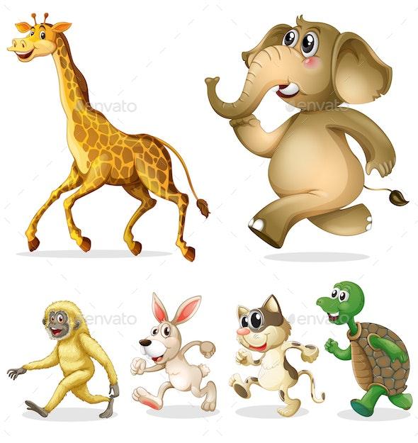 Walking Animals - Animals Characters