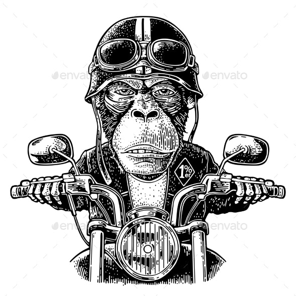 Monkey Driving a Motorcycle Rides - Animals Characters