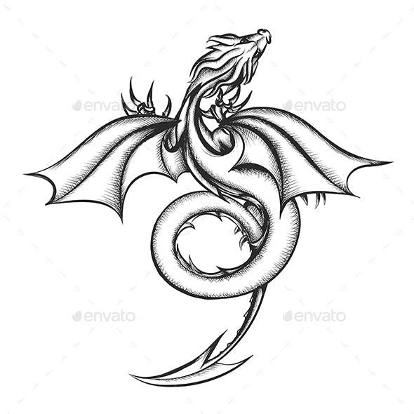Dragon Drawn in Engraving Style Isolated on White