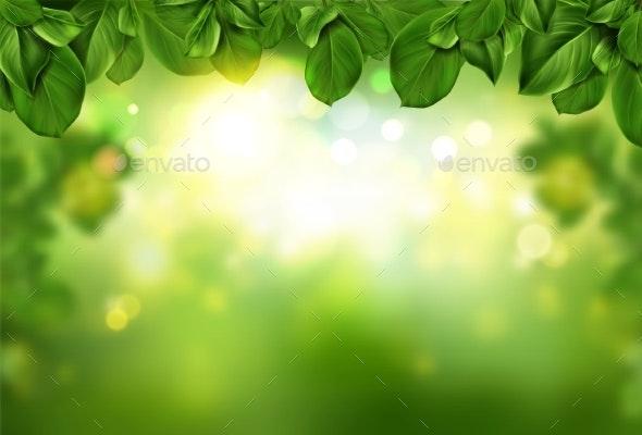 Tree Leaves Border on Green Fresh Bokeh Background - Flowers & Plants Nature