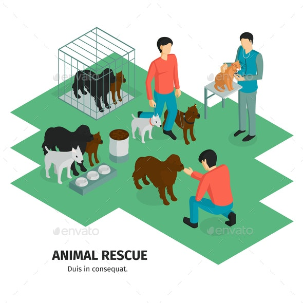Animal Rescue Isometric Background - Animals Characters