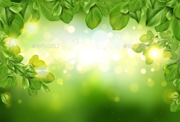 Tree Leaves Border on Green Defocused Background - Flowers & Plants Nature