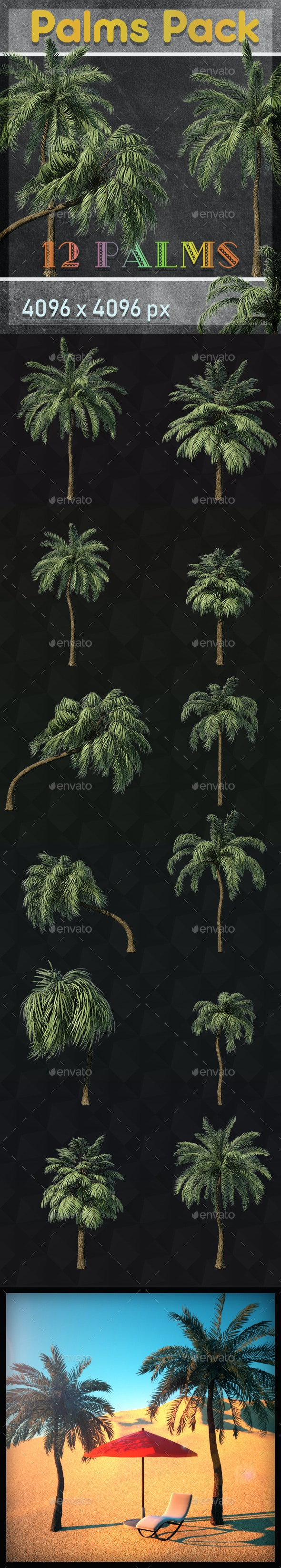 Palm Trees Pack - Objects 3D Renders