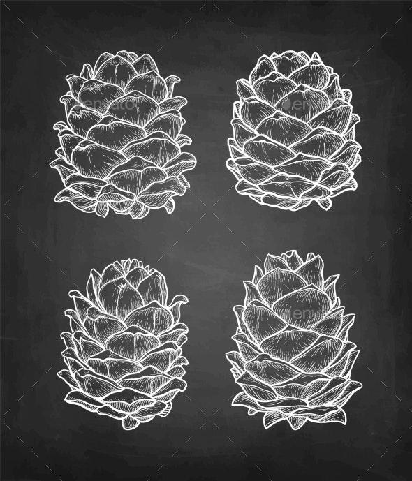 Chalk Sketch of Pine Nut - Food Objects