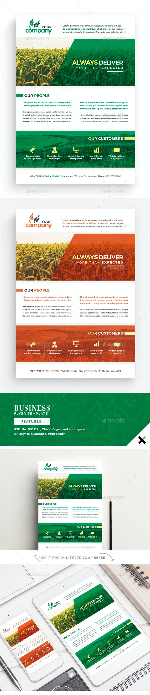 Business Presentation Flyer Template - Corporate Business Cards