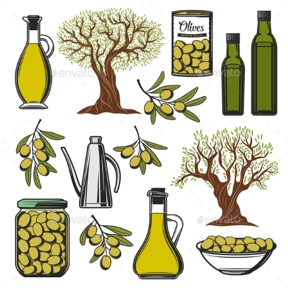 Olive Oil and Vegetables Product Icons - Food Objects