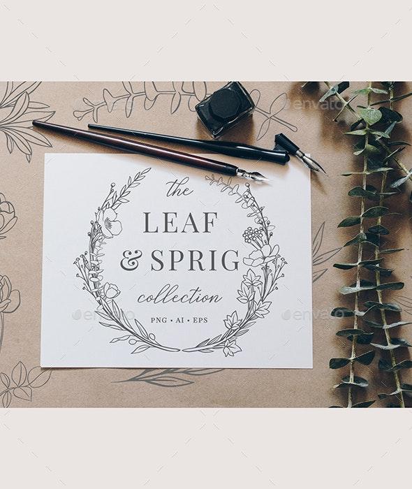 Botanical Illustrations & Logos - Nature Backgrounds