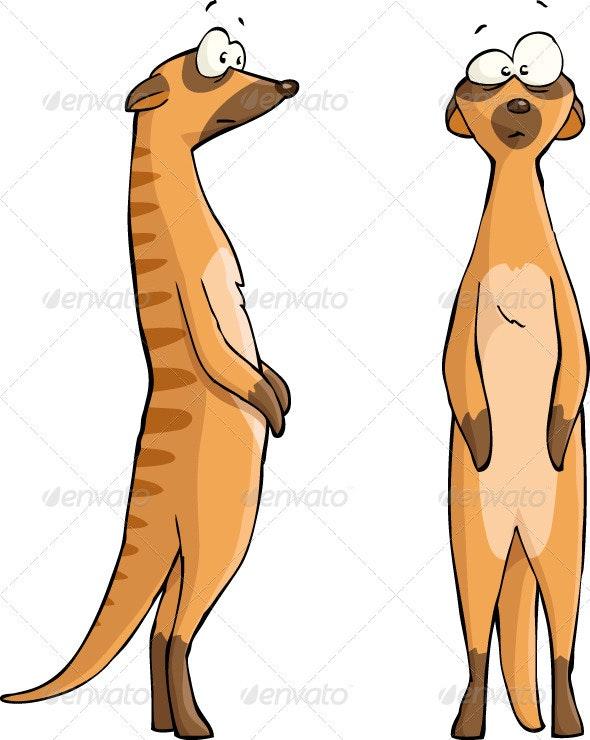 Meerkats - Animals Characters