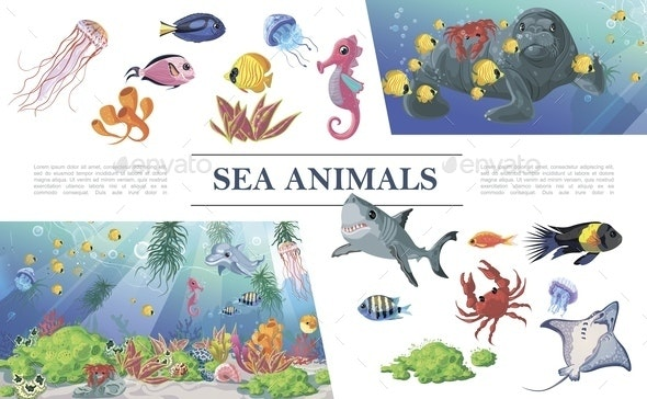 Cartoon Sea Animals Composition - Animals Characters