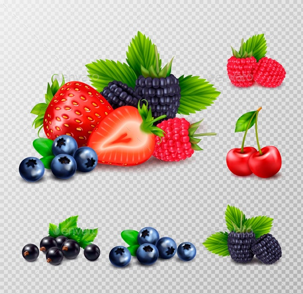 Berries and Leaves Set - Food Objects