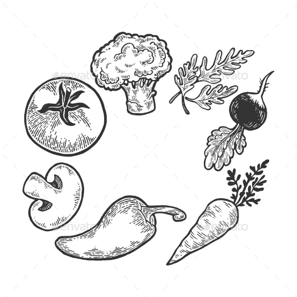 Vegetables Sketch Engraving Vector - Food Objects