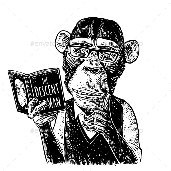 Monkey Hipster Reading a Book - Animals Characters