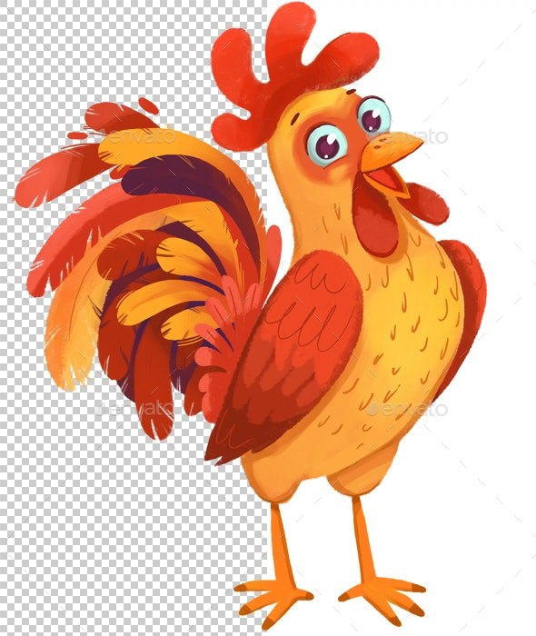 Rooster - Animals Illustrations